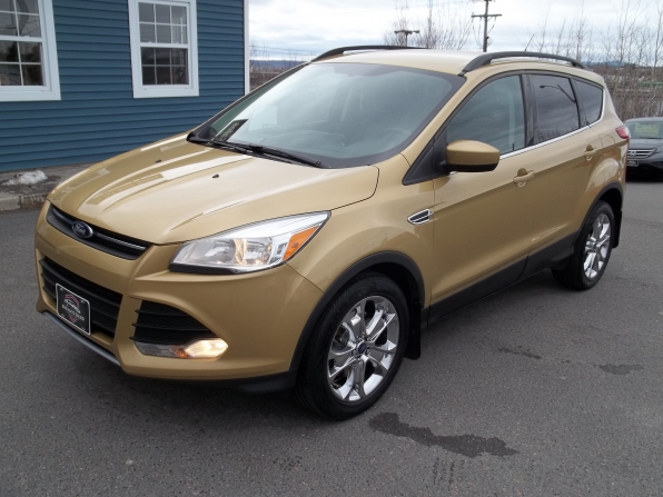 2014 Ford Escape Photo 1